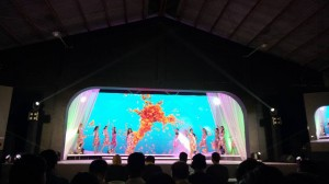 Mutya ning Mexico 2017 Casual Wear Competition (3)